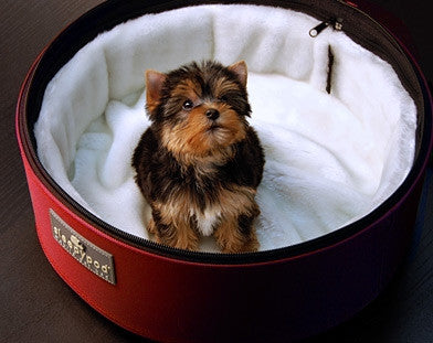 Sleepypod Ultra Plush Pet Bedding
