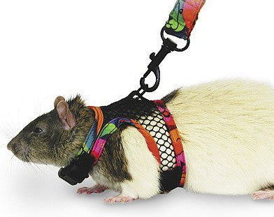 SuperPet Comfort Harness/Leash