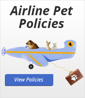 Airline Pet Policies