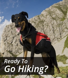 Ready To Go Hiking?