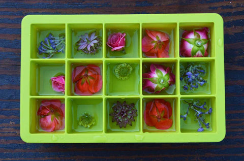 silicone ice cube tray with flowers filled for step one