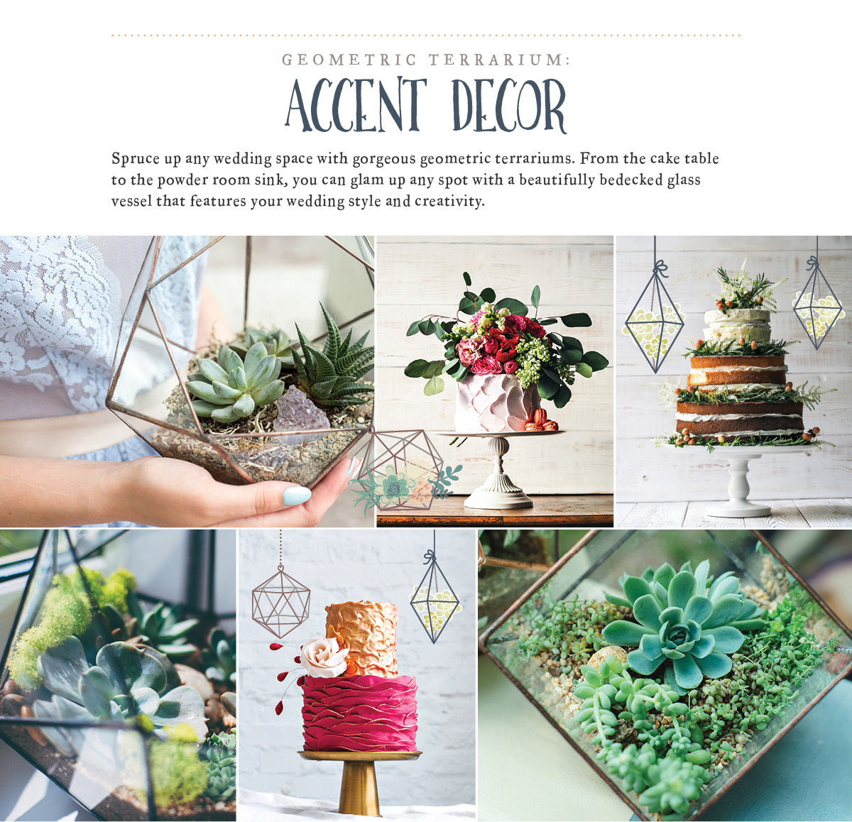 Geometric Terrarium: Accent Decor