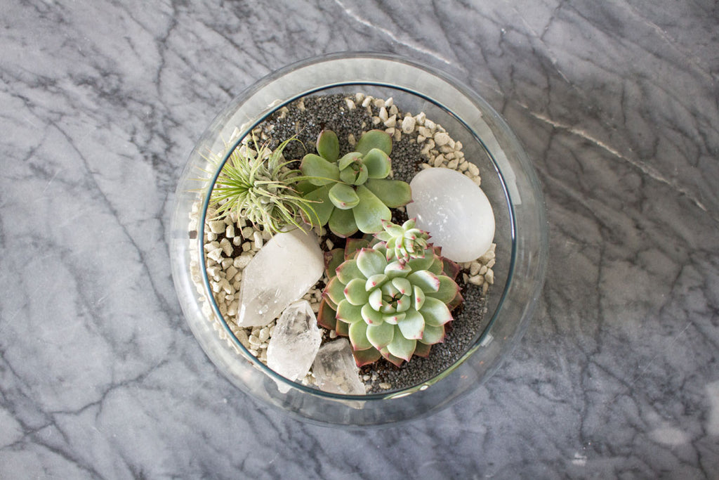 bubble ball terrarium with succulents and geodes