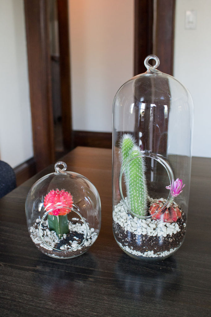ornament diy terrariums