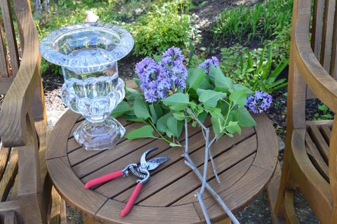 Picture of lilacs vase and cutting shears