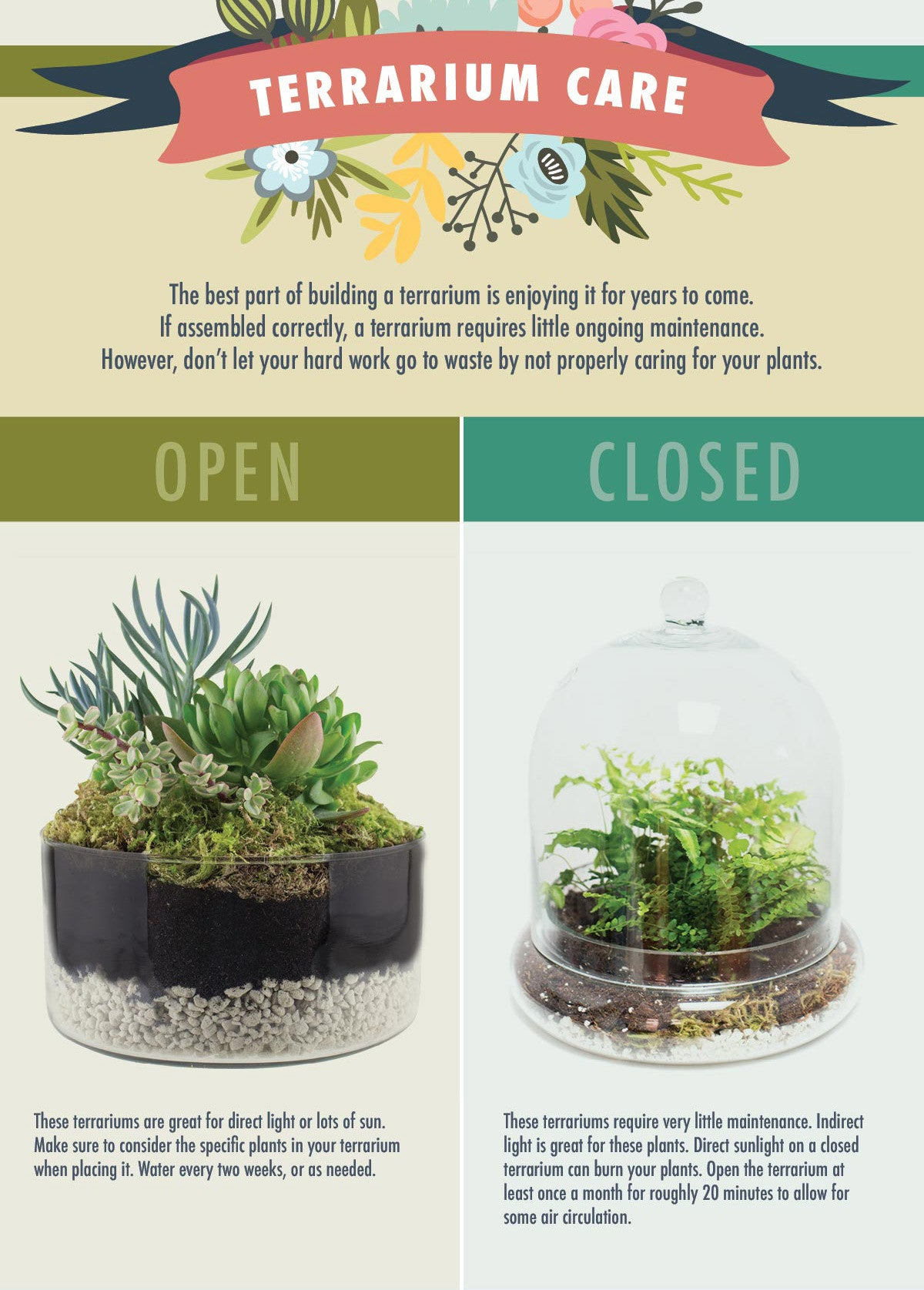 Closed Terrariums Vs Open Terrariums Which Is Best For Your Plants