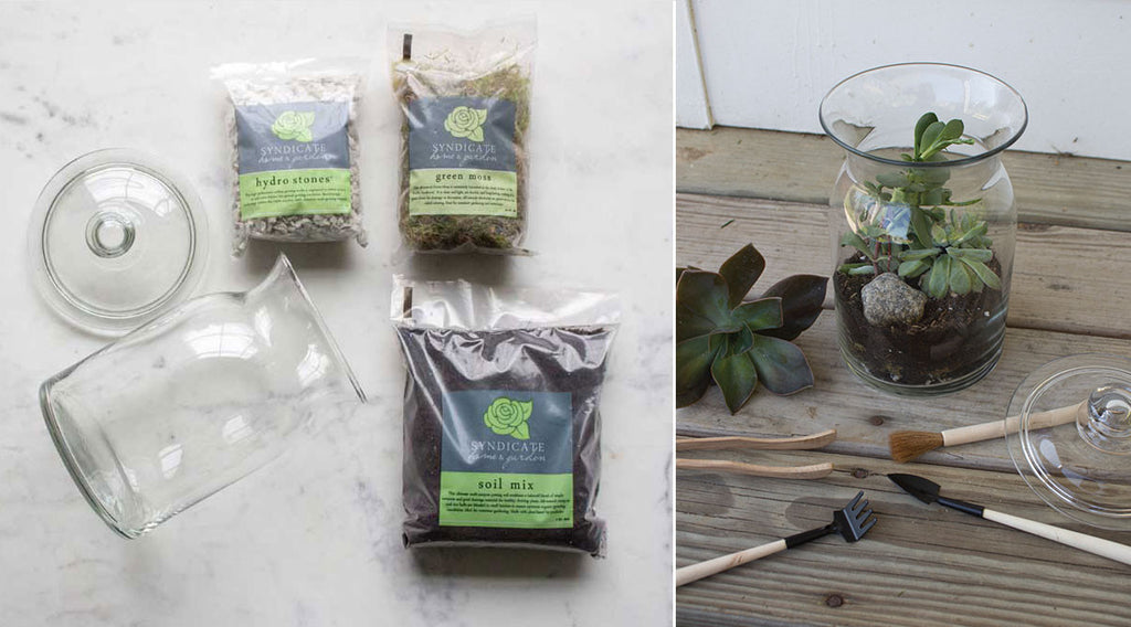 diy terrarium supplies for gifts