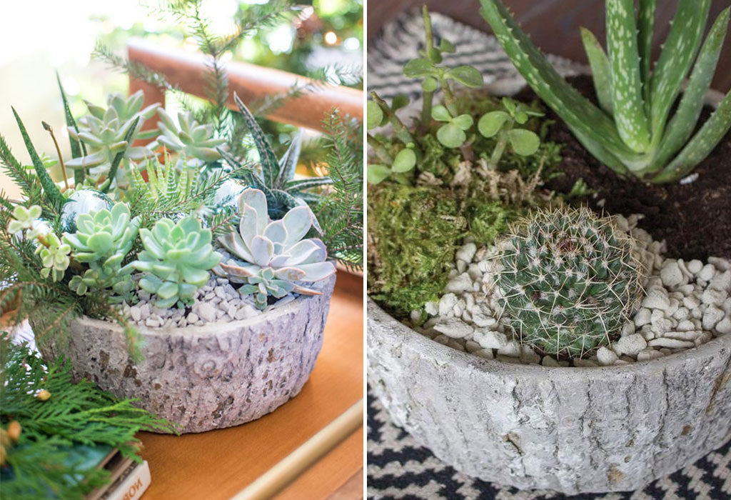 Succulent Wedding Centerpieces.How To Wedding Centerpieces Holiday Edition 46 Spruce