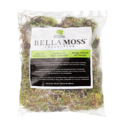 1 Qt. Green Moss Bag