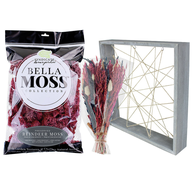 Dried Flower Frame Workshop Kit for 6 with Free Shipping