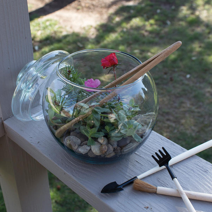 large bubble ball as a terrarium with lid and terrarium tools