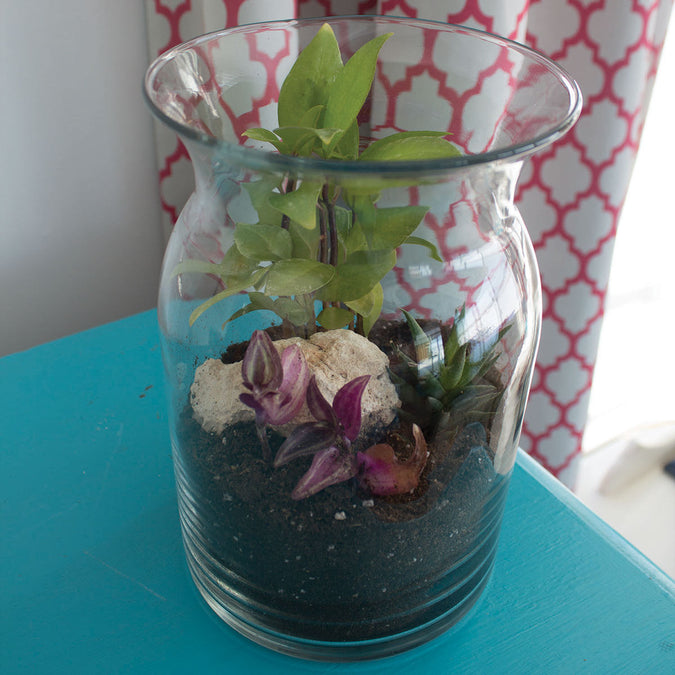 milk jug vase used as a terrarium on a teal table
