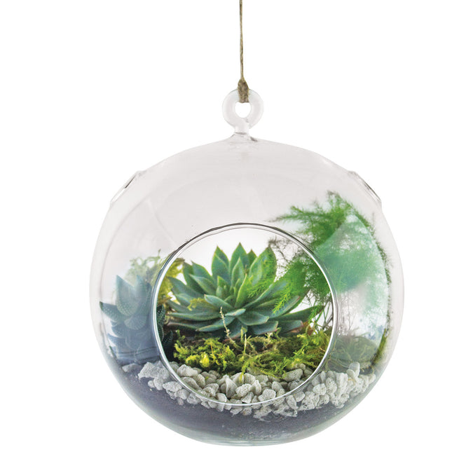 large round hanging terrarium filled with succulents stones and moss on a white background