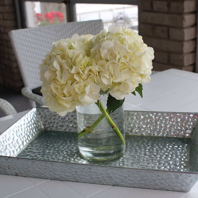 small tall modern cylinder vase filled with white hydrangeas on silver metal tray