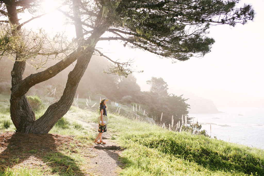 Sonoma Coast California - Mandi Nelson Photography - Promptly Journals