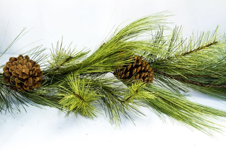 Mixed Needle Pine Garland w/cone