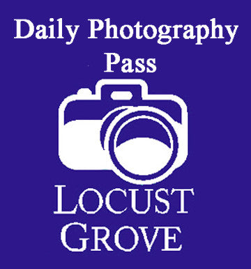 Daily Photographer Pass