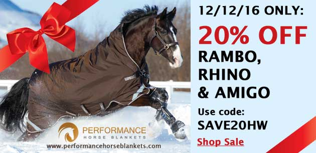 Horseware Turnout Sale