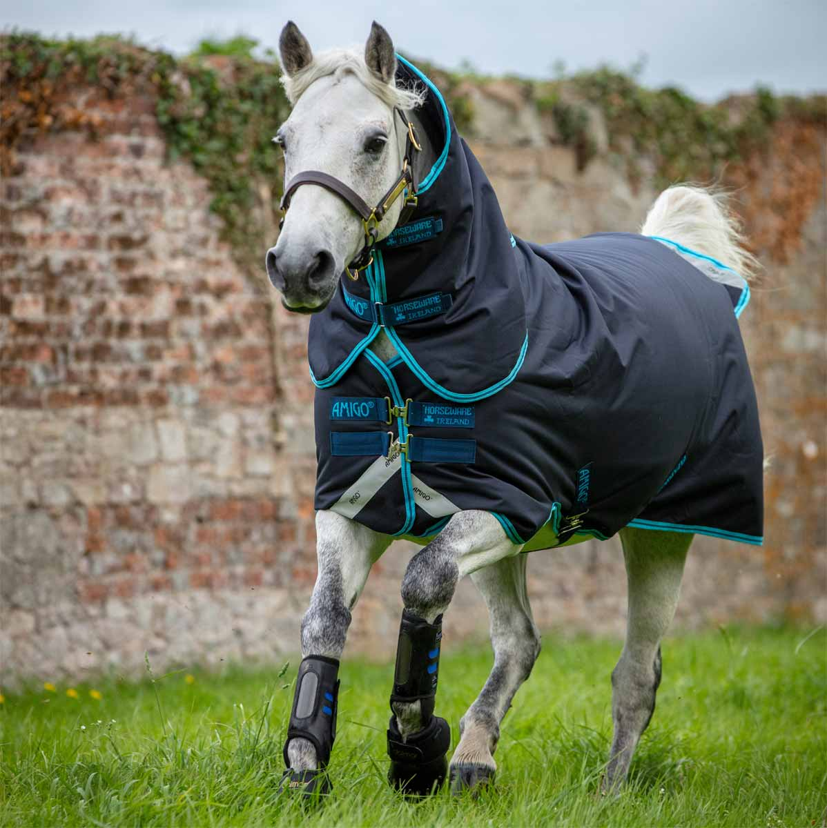 Mustang Horse Turnout Rug Medium Weight Two Tone Breathable Waterproof 250g Fill