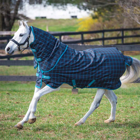 Amigo Pony Plus 50g Turnout Blanket