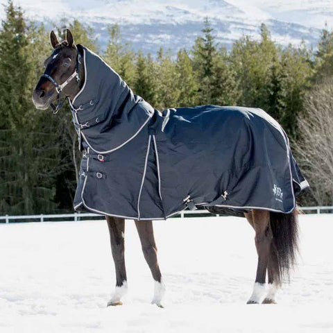 B Vertigo Georgina Medium Weight Turnout Blanket