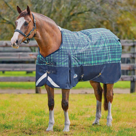 WeatherBeeta Pony ComFiTec Plus Dynamic Medium Turnout Blanket - Closeout