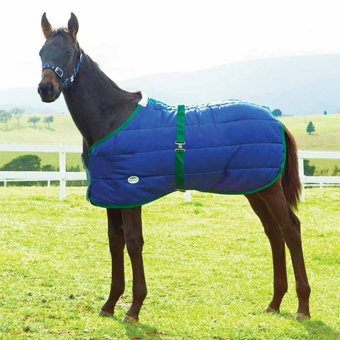 Weatherbeeta 420D Growing Foal 180g Foal Blanket