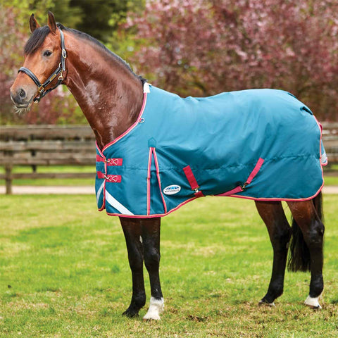 WeatherBeeta ComFiTec Plus Dynamic Medium 220g Turnout Blanket