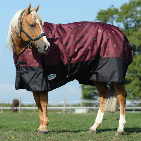 WeatherBeeta ComFiTec Essential Bandana Print Medium Turnout Blanket