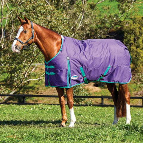 WeatherBeeta ComFiTec Essential Standard Neck Medium Purple Green