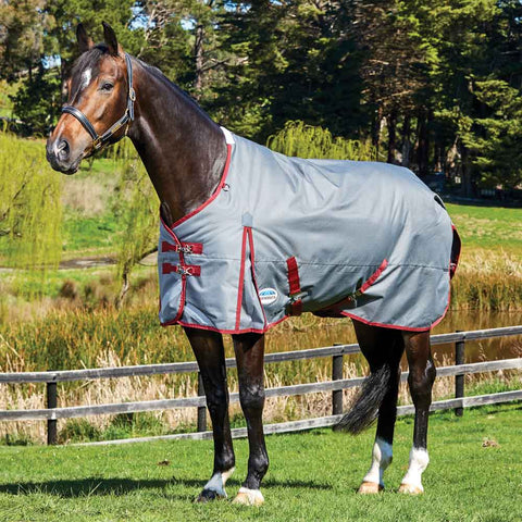 WeatherBeeta ComFiTec Plus Dynamic Medium 220g Turnout Blanket Grey Burgundy