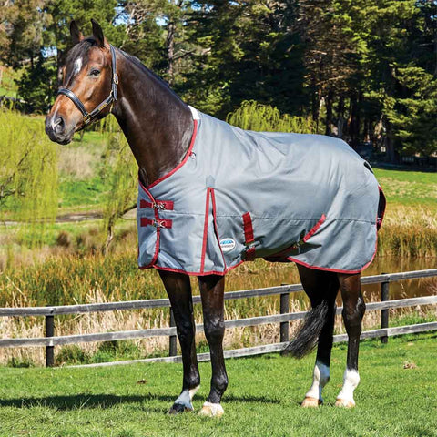 WeatherBeeta ComfiTec Plus Dynamic Standard Neck Lite Turnout Sheet