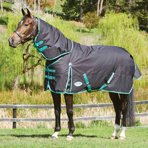 WeatherBeeta Green-Tec Detach-a-Neck Heavy Turnout Blanket