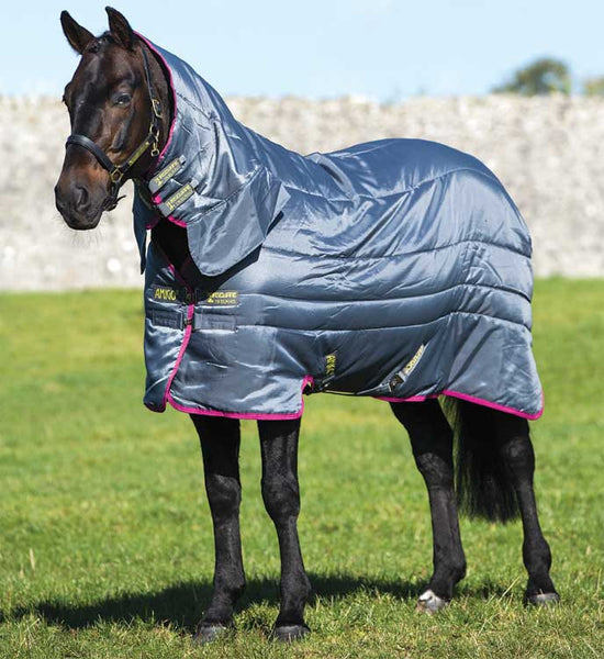 Amigo All-in-One Insulator Horse Blanket