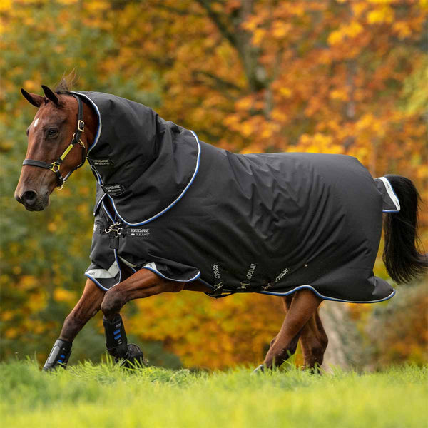 Amigo Bravo 12 Plus Medium 250g Turnout Blanket