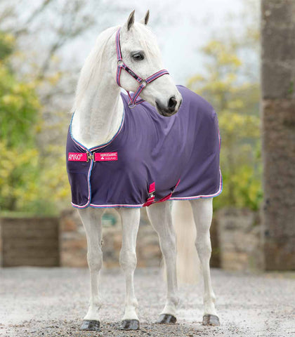 Amigo Pony Jersey Cooler in Grape