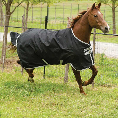 Amigo Stock Horse Lite Turnout Sheet