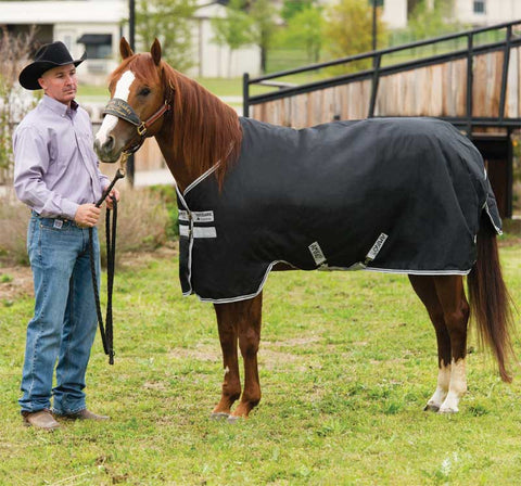 Amigo Stock Horse Medium Turnout Sheet