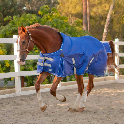 Kensington Platinum 1680D Lite Turnout Sheet