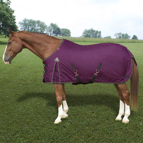 Kensington Platinum 1680D 80g Medium Turnout Blanket in Raspberry