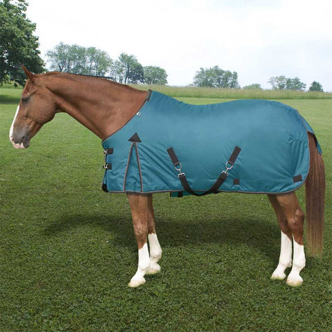 Kensington Platinum 1680D 80g Medium Turnout Blanket in Teal