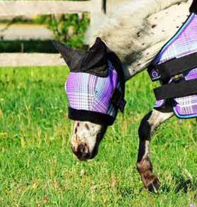 Kensington Mini Fly Mask with Fleece and Ears