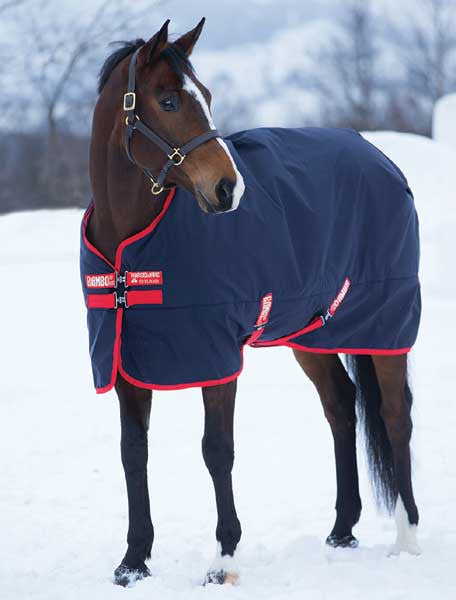 Rambo Original Medium Turnout Blanket