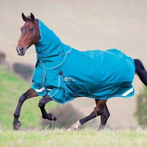 Shires StormCheeta 200g Turnout Blanket & Neck Set