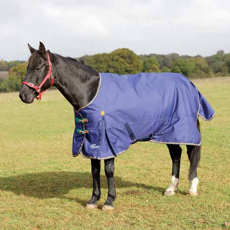 Shires Highlander Plus 100g Turnout Blanket