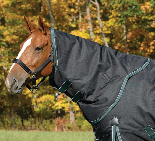 Shires Stormbreaker 300g Neck Cover