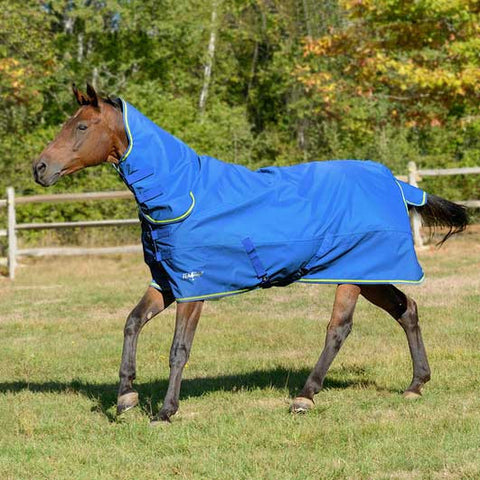 Shires Tempest Combo 100g Turnout Blanket - Royal with Lime Trim