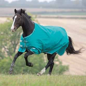Shires Tempest Plus 200g Turnout Blanket
