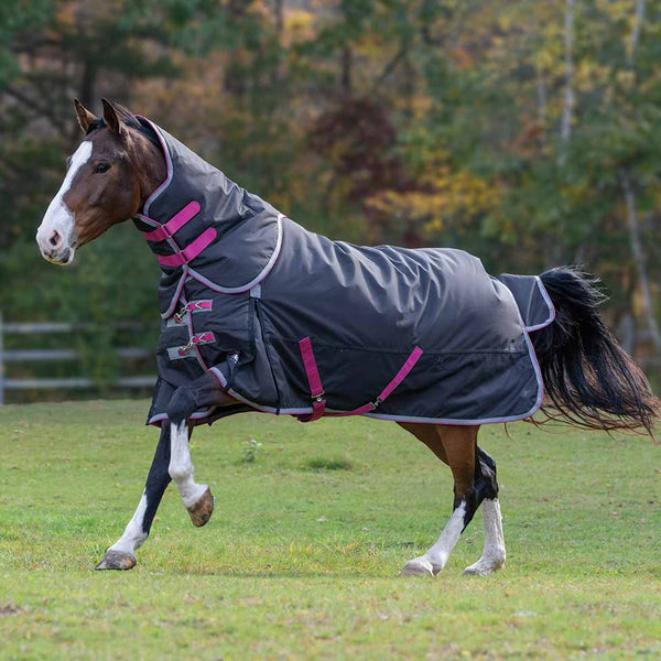 Shires Highlander 300g Turnout Blanket