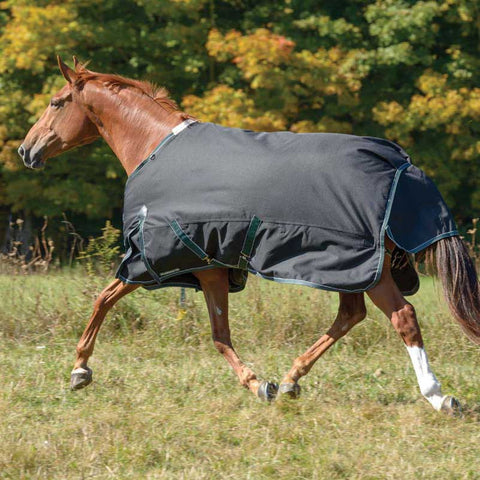 Shires Stormbreaker 300g Heavy Weight Turnout Blanket